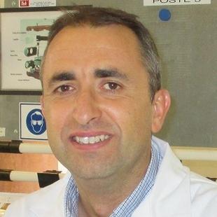 Frédéric Rosin